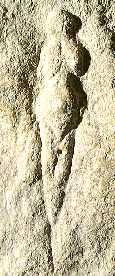 Venus van Abri Pataud, een overhangende rots bij Les Eyzies, waar zich een Cro Magnon-nederzetting bevond.